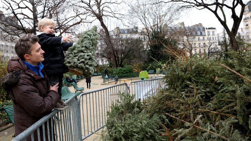 Un point de collecte de sapin de Noël à Paris.
