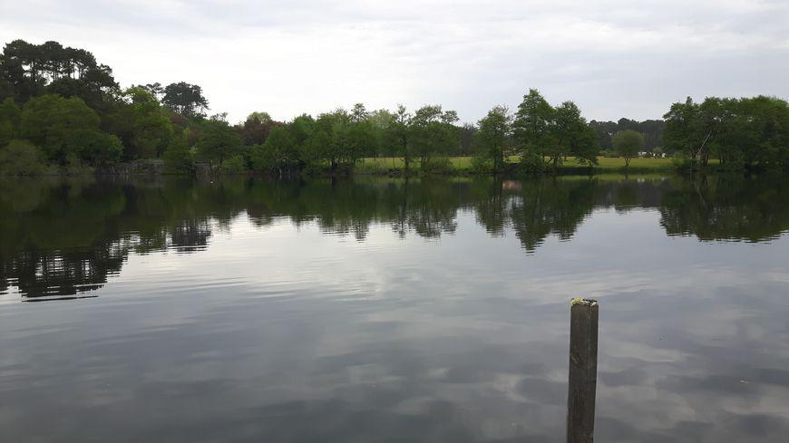 réserve naturelle de l'étang noir Seignosse