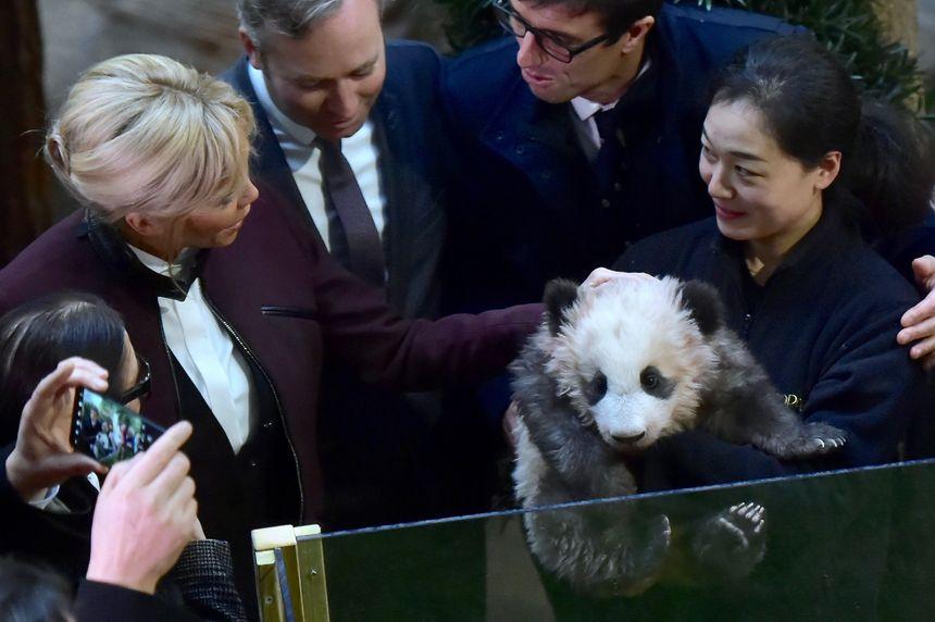 Brigitte Macron marraine du bébé panda