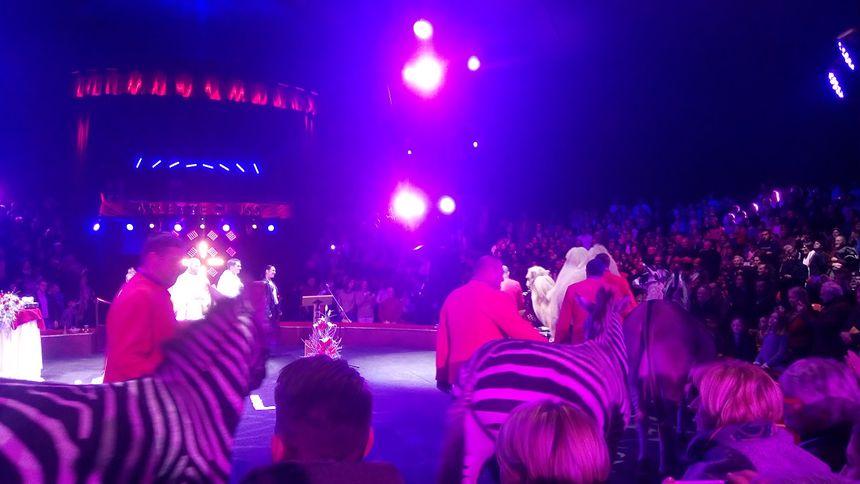 Les pensionnaires habituels du cirque.