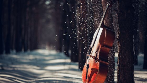 Cello in winter forest