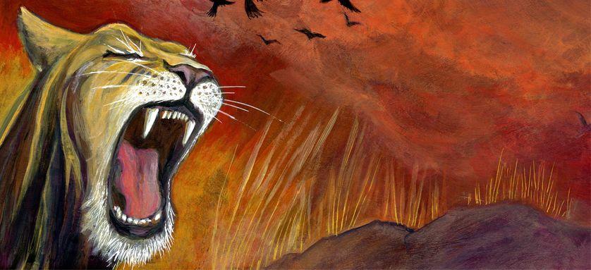 """Illustration issue de l'album """"Le Lion qui avait perdu sa crinière"""" (éditions Cipango)"""