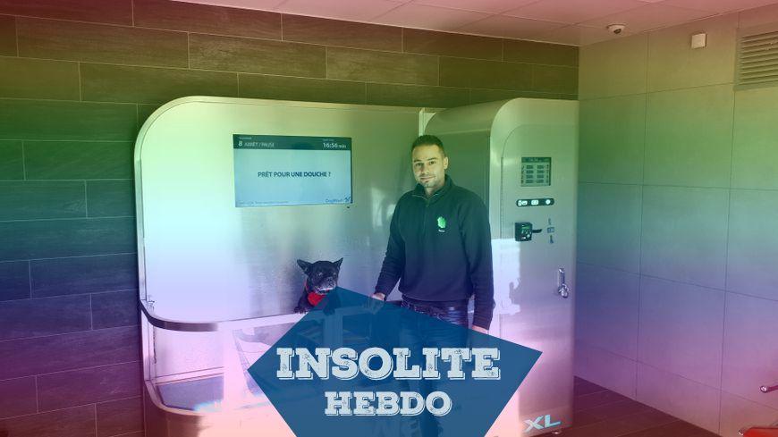 INSOLITE HEBDO - Une laverie automatique pour chiens en Lozère
