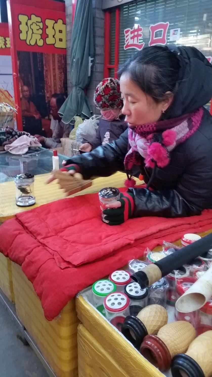 Au marché aux insectes de Pékin