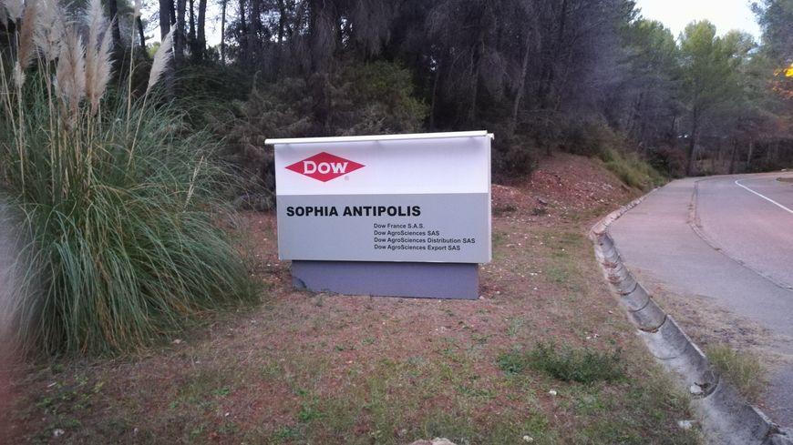 Le site Dow de Sophia Antipolis fermera d'ici un an.
