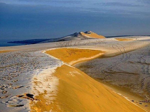 Le givre sur la dune du Pilat.