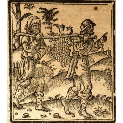 Bible latine XVIe siècle