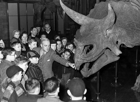 enfants au Musée d'Histoire naturelle devant un squelette d'un Tricératops géant Prorsus.