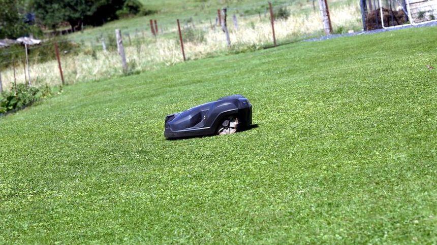 Le propriétaire du robot de tonte a été prévenu par le GPS que l'appareil empruntait la départementale 48, entre Pernay et Semblançay (photo d'illustration)