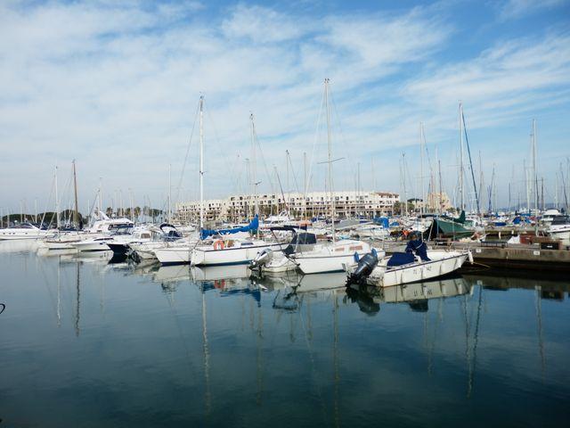 Certains Cogolinois s'interrogent sur la transparence du marché du port de Cogolin.