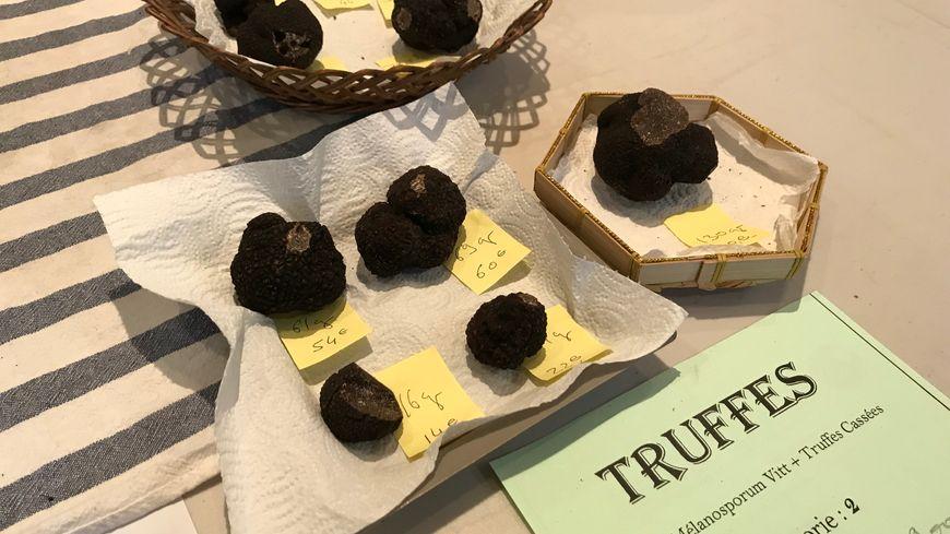 Le prix d'un kilo de truffe varie entre 850 et 1.100 euros