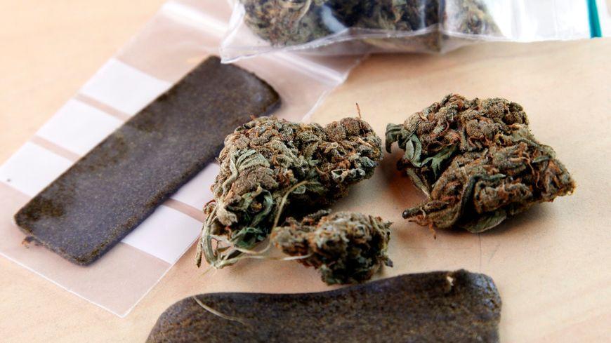 Trois tonnes de cannabis ont été saisies dans le camion d'un chauffeur routier à Bénesse-Maremne dans les Landes, le 14 décembre 2017. Photo d'illustration.
