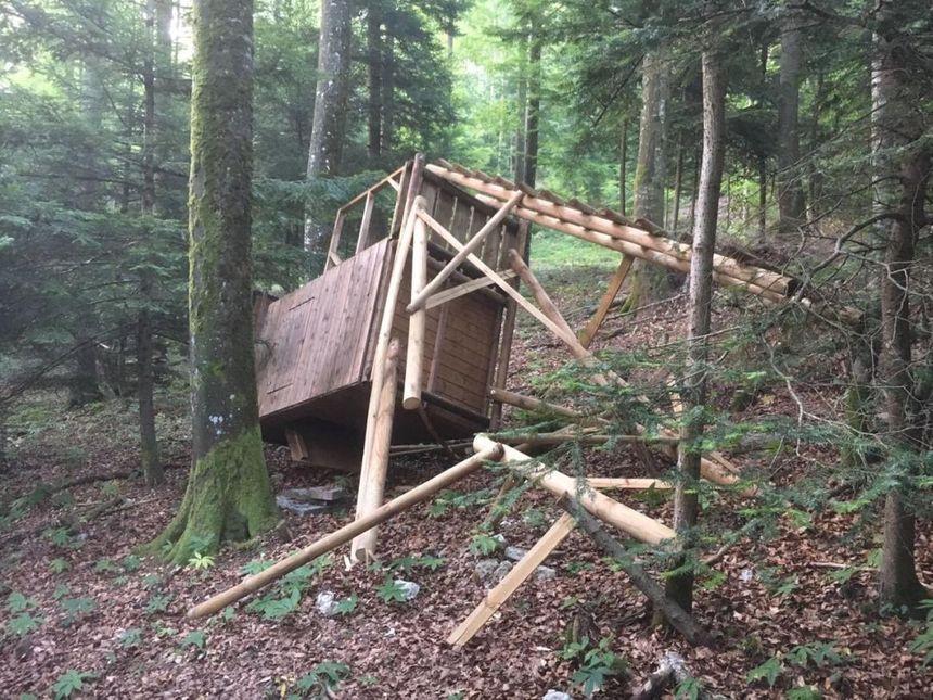 Forêt de Winkel