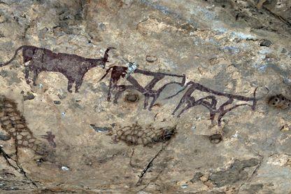 Peintures du Néolithique dans le secteur de Tamanrasset dans le Sahara algérien - septembre 2017