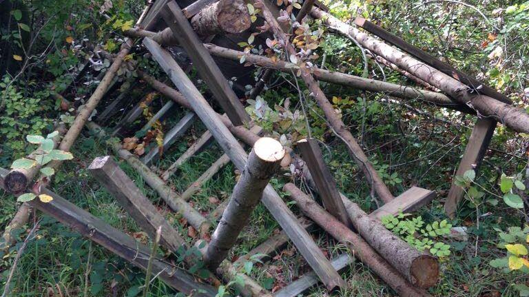 Un mirador détruit dans la forêt de Winkel