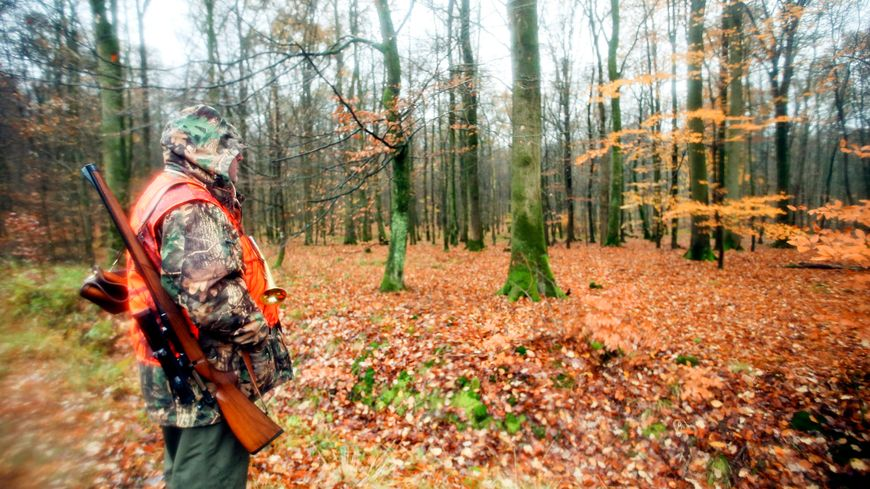 La chasse bientôt gratuite pour les nouveaux chasseurs creusois