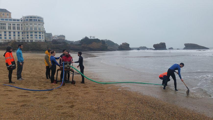 Des capteurs vont être installés à Biarritz, dans les digues de Saint-Jean-de-Luz et même jusqu'à Bilbao
