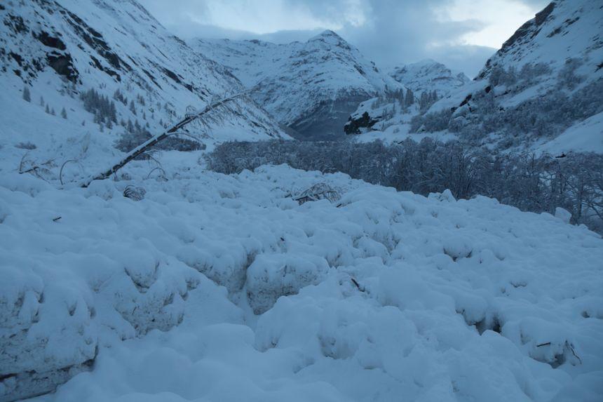 L'avalanche a détruit tout ce qui se trouvait sur son passage, dont de nombreux arbres.