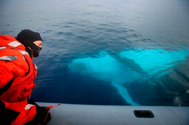Greenpeace espère documenter la vie sous-marine en mer de Weddel