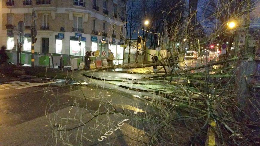 Illustration. La tempête Eleanor a provoqué de nombreux dégâts en France. Ici, à Paris.