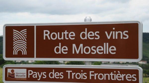 Les vins de Moselle sont les seuls de Lorraine à bénéficier d'une AOC