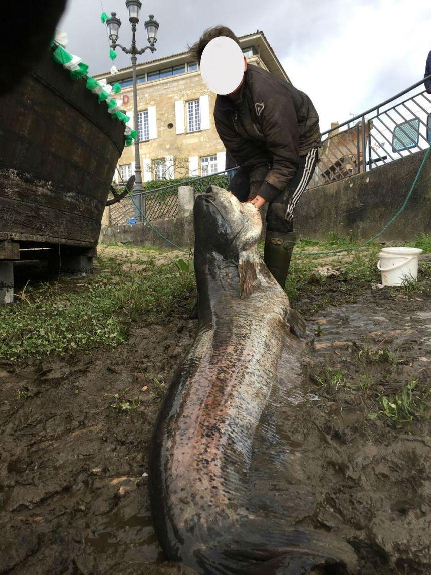 Le jeune homme avec son silure de 2 mètres 20 de long