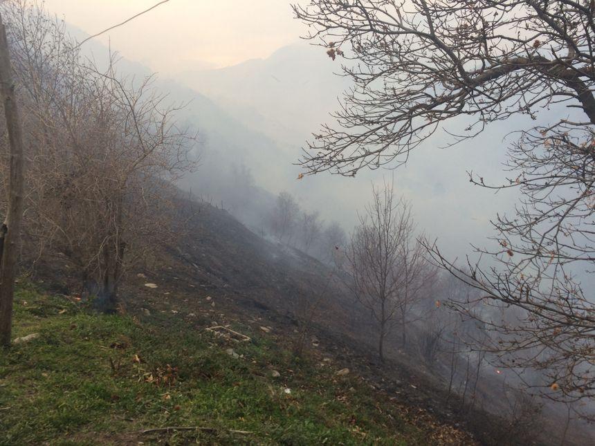 Le feu a parcouru 250 hectares depuis mardi matin