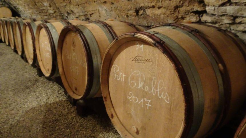 Le vin bio représente seulement 6% du vignoble de l'Yonne