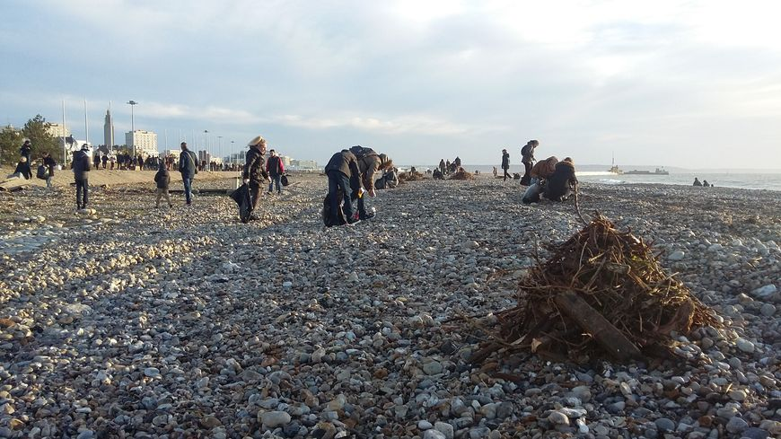 Près de 500 havrais nettoient la plage du Havre après Eleanor