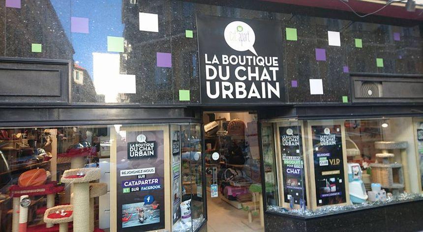 La boutique du chat urbain, une première en France