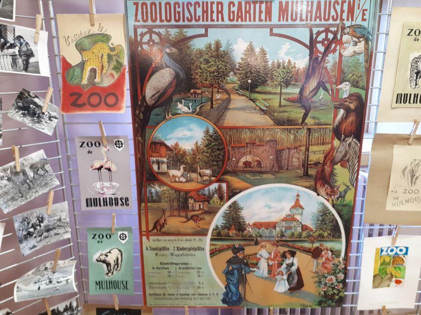 Vieilles affiches du zoo de Mulhouse.