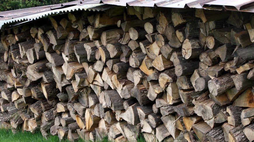 Le bois beaucoup moins cher que toutes les autres énergies