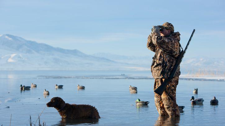 Un chasseur et son chien