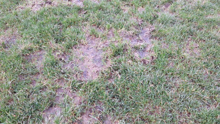 Les pelouses de Guéret sont impraticables.