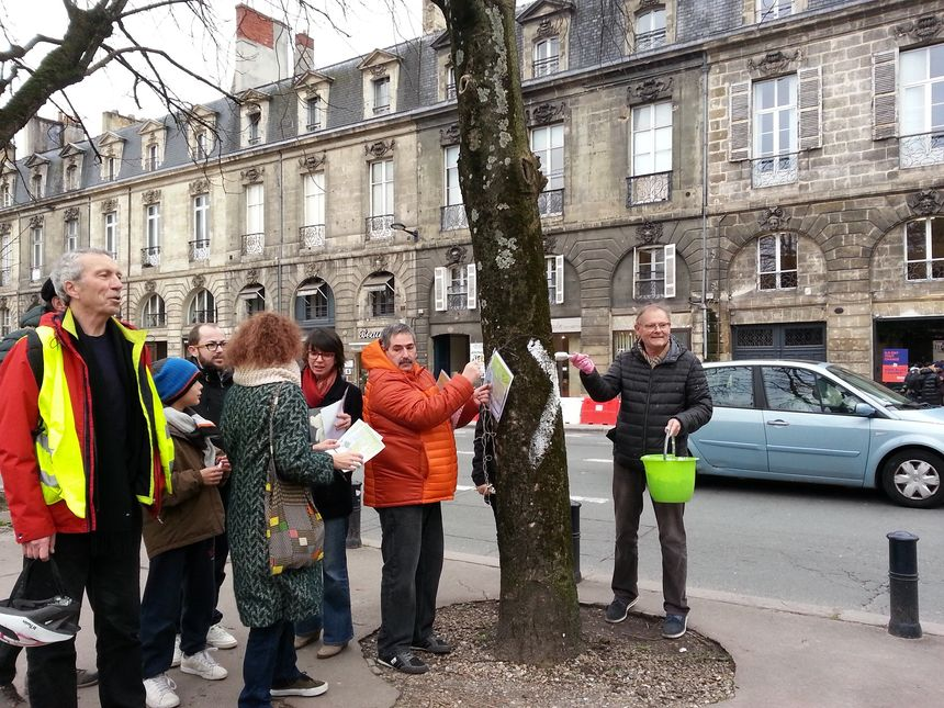 Une dizaine de membres du collectifs sur la place Gambetta pour peindre à la chaux les marronniers menacés sur la place Gambetta