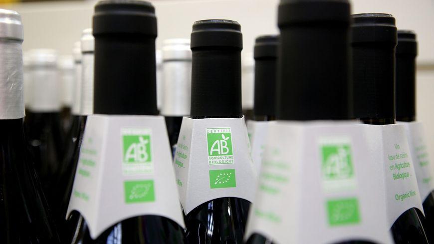 Dans l'Yonne, 6% des vignes sont bio.