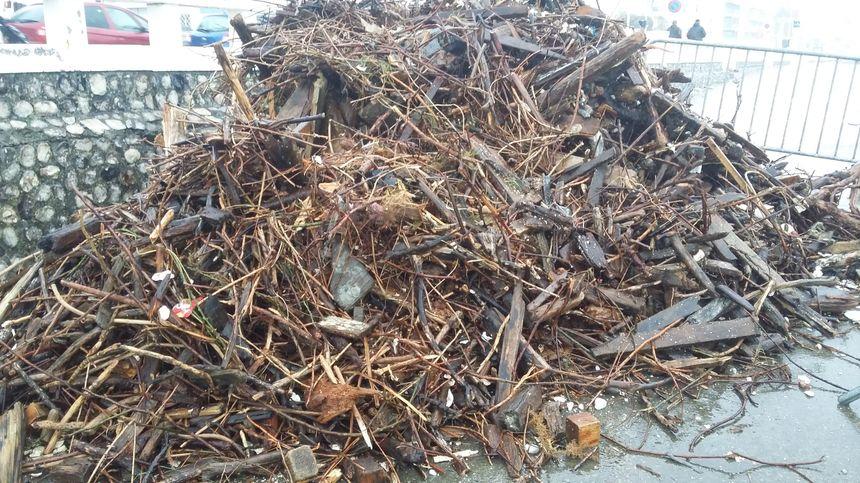 De nombreux morceaux de bois flottant ont été ramassés