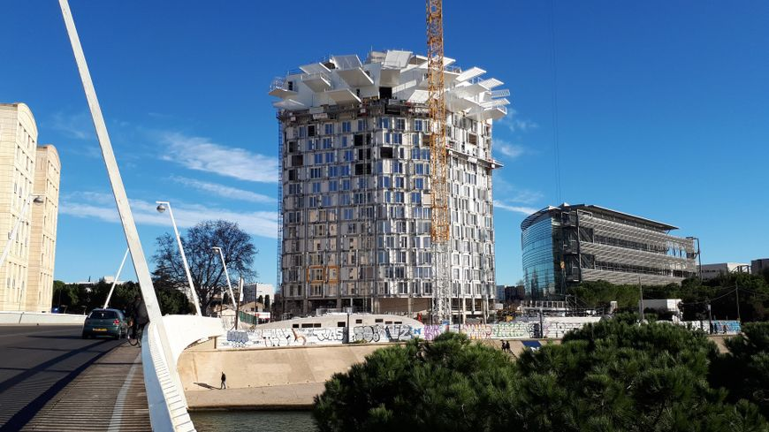Photos l 39 arbre blanc nouvelle curiosit architecturale for Architecte montpellier