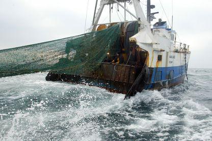 Les pêcheurs français soulagés après l'annonce du Parlement Européen interdisant la pêche électrique