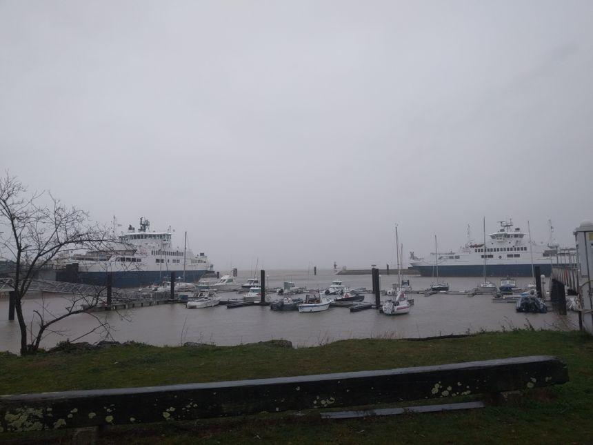 Au port du Verdon, les bacs sont restés à quai