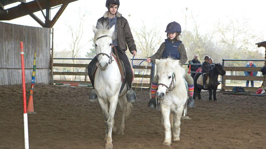 Cours d'équitation à distance avec Equivisio à Lamballe