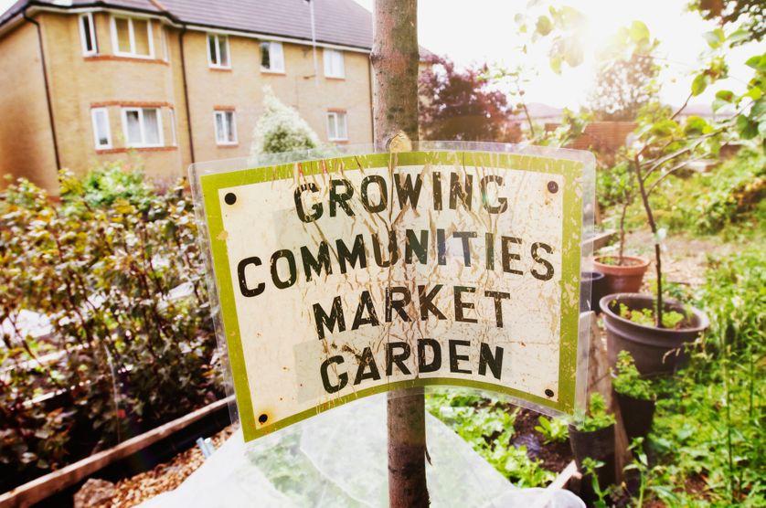Un jardin communautaire urbain à Londres