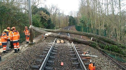 Intervention de la SNCF près de Bernay (Eure) où les arbres ont fortement endommagé une caténaire.