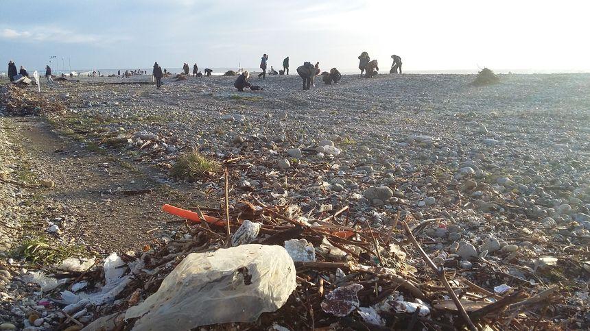 La ville du Havre appelle ses citoyens à se mobiliser pour nettoyer la plage