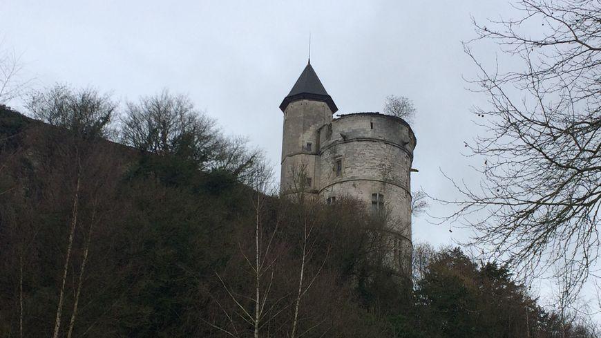 Les premières pierres du château de Tancarville datent du XIème siècle