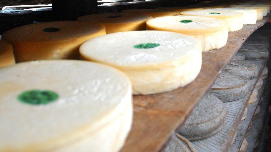 650 fromages dérobés à Beaune-le-Froid (Puy-de-Dôme)
