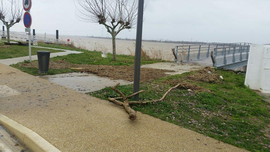 Lorsque la marée se retire, sur le port de Bourg-sur-Gironde