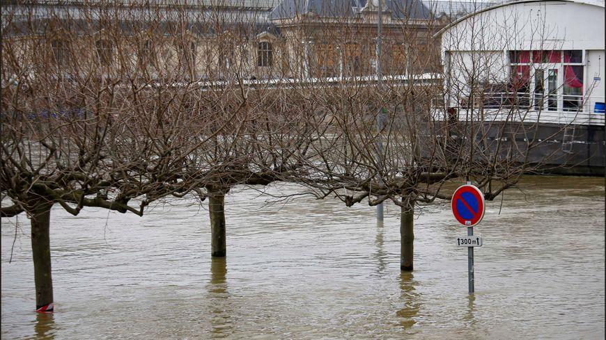 Seine en crue (janvier 2018)