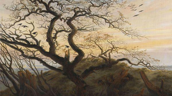 Schubert : Un Voyage d'Hiver (à 6 voix)