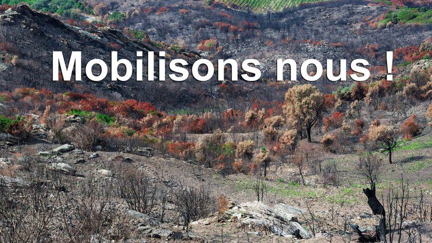 Incendie de Sant'Andrea di u Cotone, Cervione, Chiatra : l'élan de solidarité